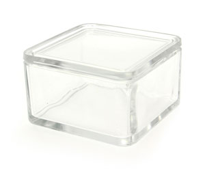 Large Glass Trough With Glass Lid