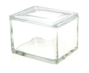 Small Glass Trough With Glass Lid