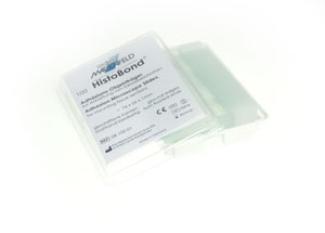 HistoBond® Adhesive Microscope Slides, Twin Frosted - BOX/100